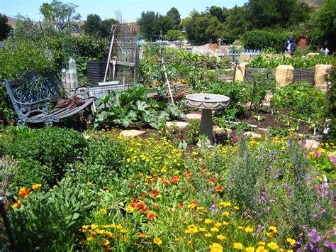 Bee Garden Flowers Seasonal Bee Gardening Uc Berkeley Bee Lab