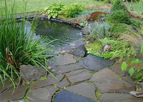small pond ideas backyard 21 garden design ideas small ponds turning your backyard