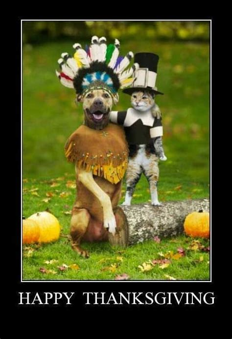 Thanksgiving Memes Tumblr - happy thanksgiving from old friends pictures photos and
