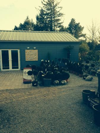 The Potting Shed Wales by The Potting Shed Manorbier Restaurant Reviews Phone