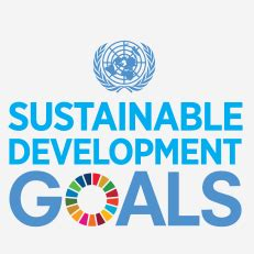 How To Build An Affordable Home by Sustainable Development Goals Sustainable Development