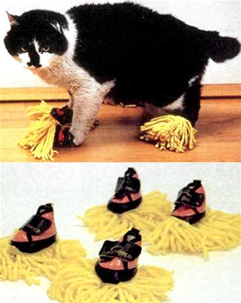 Why Do Cats Paw At The Floor by 30 Stupidest Inventions