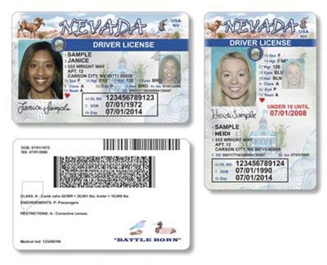 temporary drivers license template 17 temporary drivers license template temporary