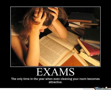 Exam Memes - funny exam meme google search rando pinterest my life so true and pretty much