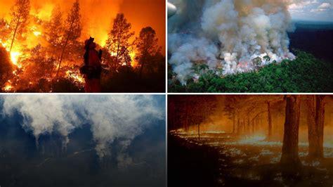 terrifying satellite images shows destructive amazon rainforest fire