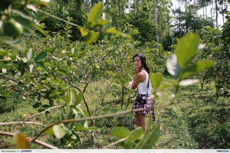 apple tree bandung surabaya 10 unforgettable memories on the way to a live