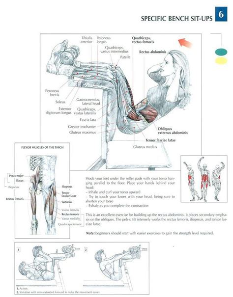 1000 images about workout abdominal on exercises crunches and target