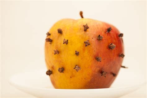 get rid of flies in house how to get rid of house flies with cloves 5 steps with pictures