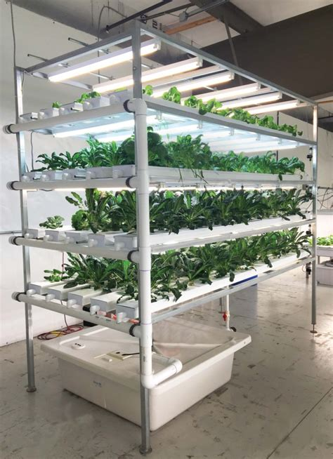 vertical hydroponic garden plans hydroponic vertical