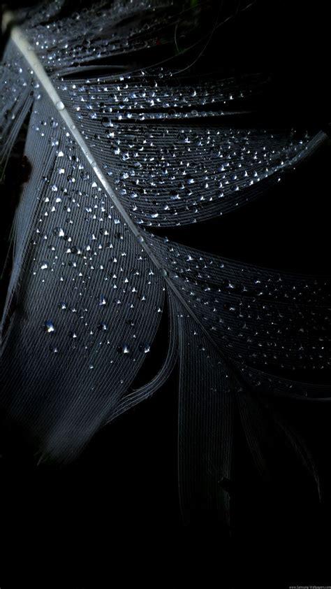 hd iphone wallpaper black feather rain drops iphone