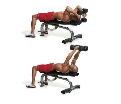 bench tricep extension the 30 best arm exercises of all time