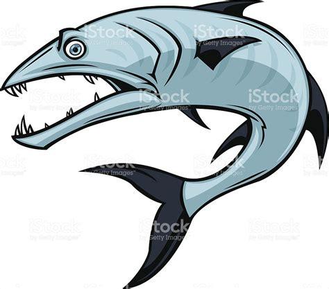 barracuda clipart barracuda stock vector 165748946 istock