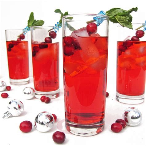 martini holiday cranberry ginger fizz cocktail recipe dishmaps