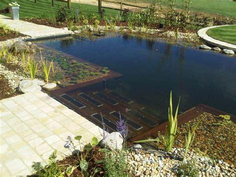 17 piscinas naturales que desear 237 as tener en tu patio