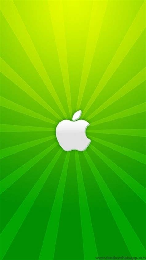 wallpaper whatsapp apple 17 best fondos whatsapp tecnolog 237 a images on pinterest