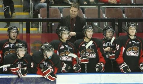 players bench prince george cougars looking for billet families for 2012 2013 season