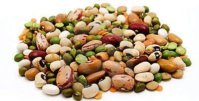 alimenti contenenti zinco e rame dieta per capelli sani e forti it