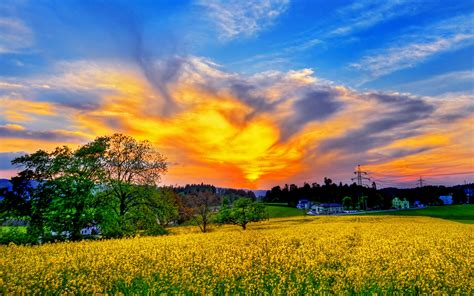 beautiful spring scenery wallpapers wallpapersafari spring scenery wallpaper wallpapersafari