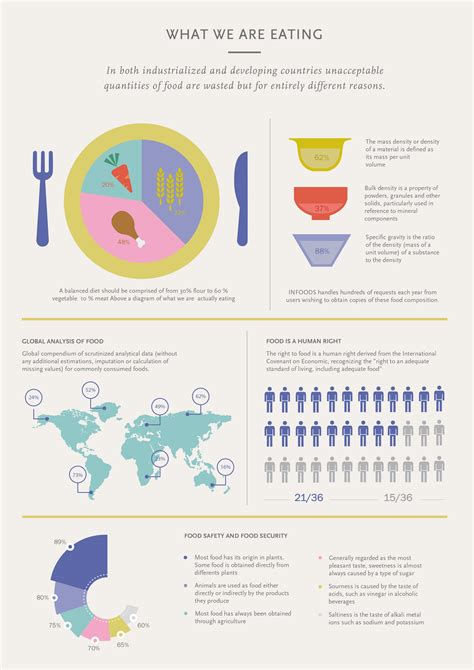 cooking infographic food infographic