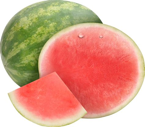 watermelon png watermelon png transparent watermelon png images pluspng