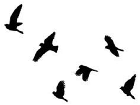 Flying Blackbird Outline by 25 Best Ideas About Bird Silhouette Tattoos On Flying Bird Silhouette Silhouette