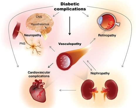 alimentazione per diabetici mellito malattie metaboliche il diabete mellito