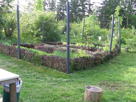 Straw Bale Gardening by Straw Bale Gardens Deberosa S Homestead Weblog