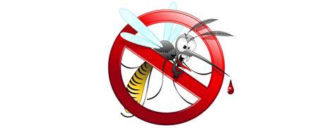 zanzare giardino rimedi la migliore rimedi contro le zanzare in giardino idee e