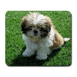 ebay shih tzu puppies shih tzu puppies puppy dogs pets animal large mousepad mouse pad ebay
