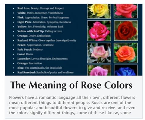 whats the meaning of valentines day color meanings colors meanings