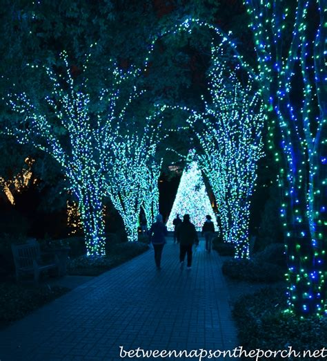 garden lights holiday nights atlanta botanical garden atlanta botanical gardens christmas garden lights