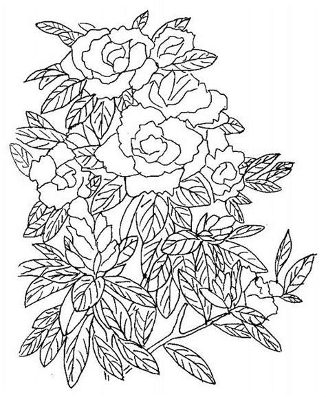disegni sui fiori tante da colorare per i bambini disegni da colorare