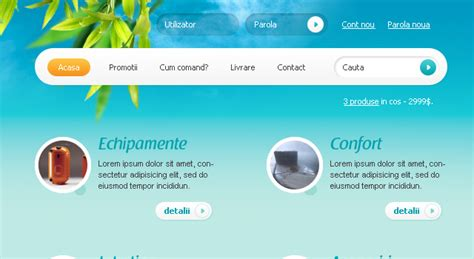 design layout web online reve shop web design
