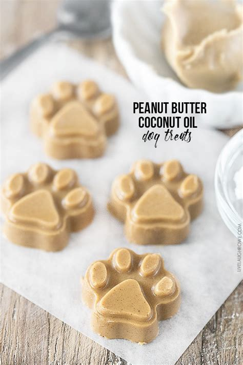 best peanut butter for dogs peanut butter coconut treats and new years tips