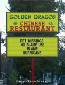 Funny chinese restaurant pet hurricane sign picture golden dragon