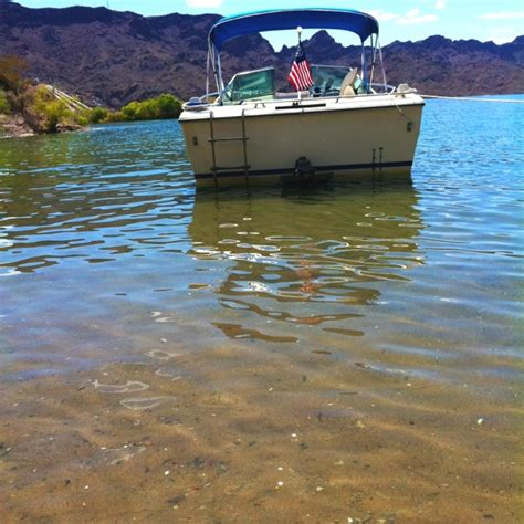 boats and hoes havasu 99 best images about boats and hoes on pinterest boats