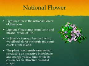 Flowers Are Red Lyrics - national symbols and heroes of jamaica