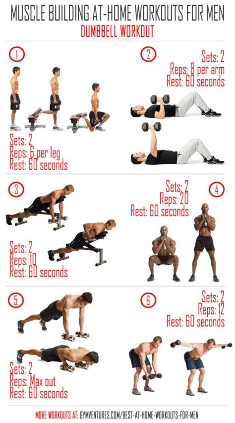 home workout plan for men best 10 dumbbell workout ideas on pinterest dumbbell