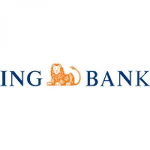 bank ing belgium ing belgium banking insurance for individuals and caroldoey