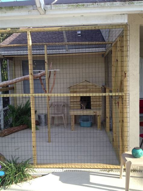 cat patio enclosures cats patio and outdoor cats on