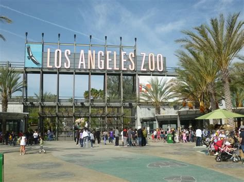 La Zoo And Botanical Gardens Experiencing Los Angeles Los Angeles Zoo And Botanical Gardens