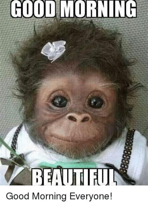 Good Morning Ladies Meme - good morning beautiful good morning everyone meme on me me