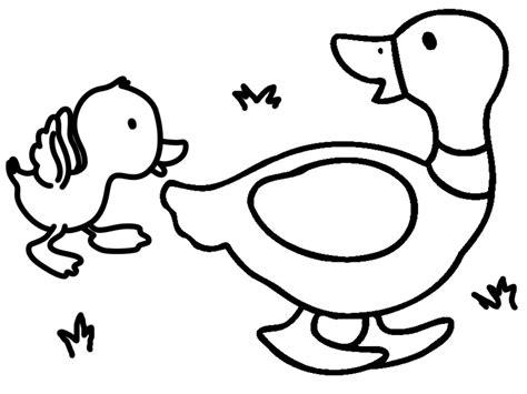 imagenes reales para colorear dibujos de animales para colorear pintar e imprimir gratis