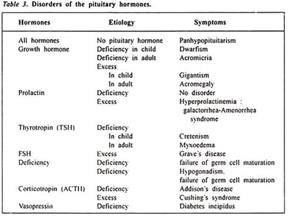 Excessive By Essay by Essay On Hormonal Disorders Top 7 Essays Disorders Endocrinology