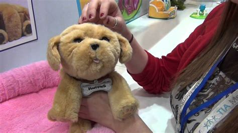 snuggle puppies fair 2016 snuggle puppy live pets from moose toys