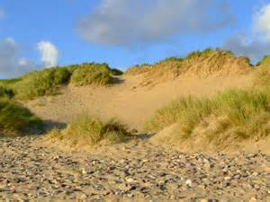 sand dunes free early years amp primary teaching resources