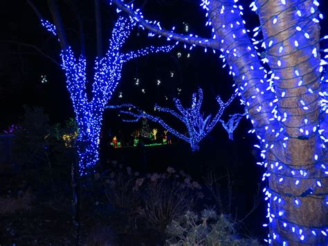 Meadowlark Botanical Gardens Lights by Kid Trips Northern Virginia Kid Trips Family Travel