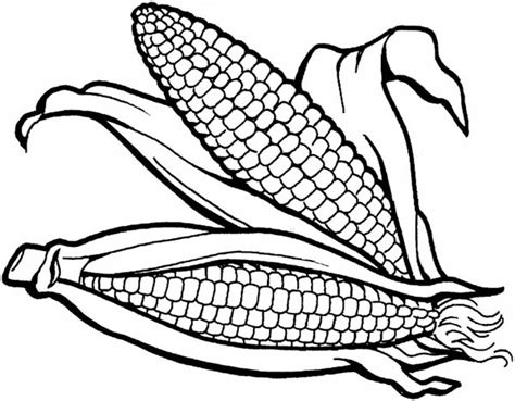 Free Coloring Pages Of Corn Cob Corn Cob Coloring Page