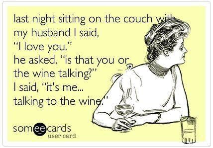 I Love Wine Meme - gallery for gt i love wine meme facts pinterest