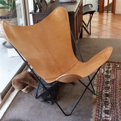 Leather Armchair Australia by Bkf Butterfly Chairs Nz And Italian Leather 680 750